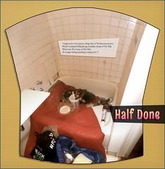 Missing Section (chrstphre) Tags: tiles bathroom shower xay spofford spokane washington repair fix