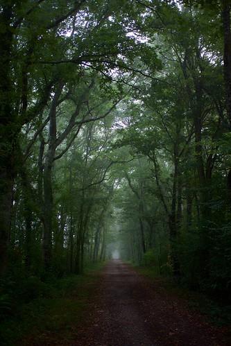Eauze misty morning ©  Still ePsiLoN