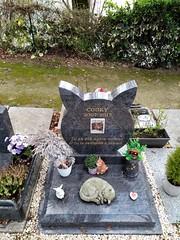 COOKY (marsupilami92) Tags: frankreich france îledefrance 92 hautsdeseine asnièressurseine cimetière îlerobinson