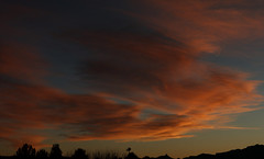 Sunset 3 3 19 #06_stitch (Az Skies Photography) Tags: march 3 2019 march32019 3319 332019 canon eos 80d canoneos80d eos80d canon80d rio rico arizona az riorico rioricoaz sun set sunset dusk twilight nightfall sky skyline skyscape cloud clouds arizonasky arizonaskyscape arizonaskyline arizonasunset red orange yellow gold golden salmon black panorama