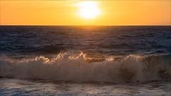 P2233575 Floreat City Beach (Dave Curtis) Tags: perth wave sunset australia em5 omd olympus places wa westernaustralia