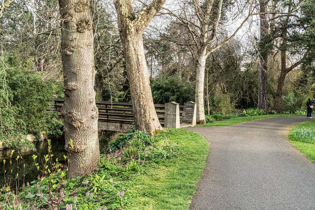 THE BOTANIC GARDENS IN GLASNEVIN DUBLIN [ TODAY I USED A VOIGTLANDER 40mm F1.2 LENS]-150648