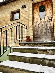 Teddy bear (myumlla) Tags: stairs softtoys bear door snow toy teddybear