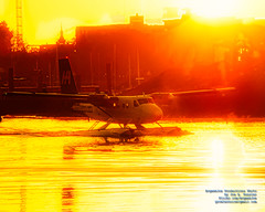 A Harbour Air Twin Otter Under the Victoria Harbour Sunrise in HDR (AvgeekJoe) Tags: 1981dehavillanddhc6 britishcolumbia cgfha canada dehavillanddhc6twinotter300 dehavillanddhc6 dehavillandtwinotter300 dhc6twinotter300 dhc6 dhc6twinotter floatplane hdr harbourair importedkeywordtags lensflare sunrise twinotter twinotter300 victoria victoriaharbour aircraft airplane aviation plane seaplane