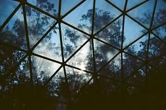 dome (Lucas Marcomini) Tags: filmphotography film analog 35mm filmisnotdead buyfilmnotmegapixels ishootfilm 35mmfilm nature shadows design shape pattern brazil brasil