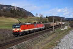 1144 117 + 1144 089, G 45281. Pöckau (M. Kolenig) Tags: 1144 schachbrett güterzug rca berg baum wald