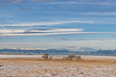 January 26, 2019 - A beautiful scene along the Colorado Front Range. (Tony's Takes)