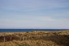 Anti Shark Fences (Eisbär auf Taiwan) Tags: deutschland baltic beach sea schleswigholstein ostsee heiligenhafen