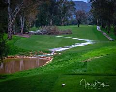 After the Rains-3934 (Jeffrey Balfus (thx for 3.3 Million views)) Tags: sonyalpha saratoga california unitedstates us