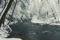 Pasted (Matt Champlin) Tags: wednesday humpday snow snowy snowstorm snowday river hike hiking adventure winter canon 2018 life nature landscape beautiful pristine pure outdoors idyllic water trees forest covered