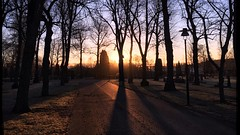Another Dawning Day (halleluja2014) Tags: contrast skugga shadow sweden dalarna falun morgon morning dawn soluppgång sunrise tilia lind trees linden cemetery kyrkogård norslund