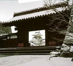 (tsubasabs) Tags: 2019年 6×6 autocordi japan twinlensreflex toyama winter フィルム フィルムカメラ ブローニー 中判 二眼レフ 冬 富山 日本