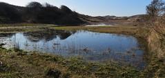 Meijendel (Elisa1880) Tags: meijendel wassenaar the hague scheveningen nederland netherlands zuidholland swamp moeras