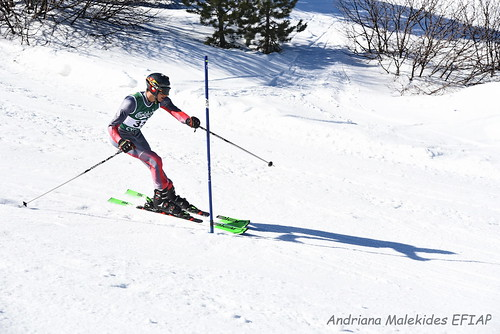 Alpine Races I & II Feb 2019_09