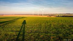 This shadow is me =) (cedant1) Tags: héron liège namur belgique belgium wallonia wallonie spring trees wind windmill eolienne green field sky cloud sunny goldenhour d750 nikon nikond750 afs1635f4 uwa nisi nisiv5pro nisicpl shadow