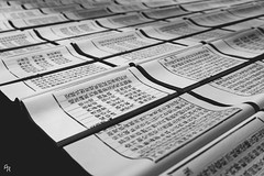 In the beginning was the words, and the words were everything (Andrea Rizzi Esk) Tags: valencia centro carmen culture book paper chienes xu bing art people black white monochromatic spain 2019