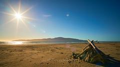 NZ Travels  - Paraparaumu Beach 06 (ArdieBeaPhotography) Tags: paraparaumubeach kapiti island coast shore beach sand haretails bunnytails grassseed dunegrass flax driftwood sunset sun lensflare dune pacific ocean sea glitter reflection