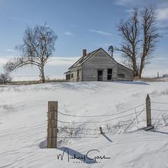 Davenport Homestead (NikonDigifan) Tags: homestead abandoned abandonedhouse dilapidated rural farming farm farmhouse post fencepost winter snow windmill barbedwire shadows trees nikond850 nikon nikon28300 mikegassphotography