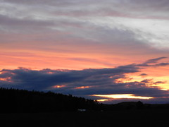 ...nun hat die grosse Wolke eine andre Struktur... (elisabeth.mcghee) Tags: abendrot abendhimmel abendsonne sunset sonnenuntergang himmel sky wolken clouds unterbibrach bäume trees wald forest oberpfalz upper palatinate