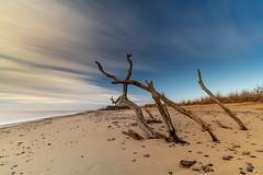 STREAK (Nick Seaman Photos) Tags: benro leefilters polarizer polariser sand covehithe beach sunrise eastanglia suffolk zeiss a7riii a7rii a7r a7siii a7sii a7s a7iii a7ii a7 sony batis2818