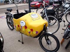 Very Dutch (reehren) Tags: netherlands bergenaanzee bicycle bakfiets cargobike woodenshoe tulip