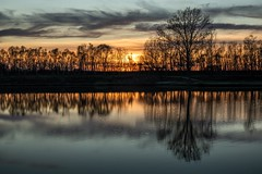 Sunset with reflections on the water. Località Boschetto (BO) (albertocali) Tags: bluehour cloud clouds lake reflection reflections sun sunset tree trees water bologna italy