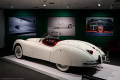 1956 Jaguar XK140 Roadster (Jeff_B.) Tags: cars car automobiles carphotography automotivephotography museum art automotiveart carswithoutlimits itswhitenoise rhodeisland carmuseumcarmuseum jaguar jag britishcar british roadster xk140 xk 1950s 1956 portsmouth