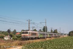 La BB 7399 file dans la paline commingeoise avec le14351 Toulouse - Bayonne (Sylvain COSTES) Tags: bb7200 locomotive train railway corail intercités toulouse bayonne labartheinard comminges