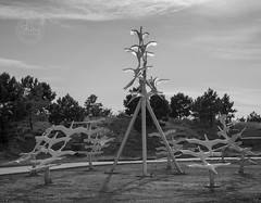 The centerpiece of Ascentiate, the memorial for the theater shooting, in black and white. Taken on 9-29-18, at Aurora Municipal Center in Aurora, Colorado.  ~ ~ ~ ~ ~  #CanonRebelT5 #Canon #Rebel #T5 F/5 33mm 1/1000s ISO-100 #Ascentiate #memorial #blackan (oooshinyphotography) Tags: canonrebelt5 720memorial coloradoshared coloradotography aurora canon oooshiny blackandwhite ascentiate colorado bnwcaptures memorial blackandwhitephotography statuephotography neverforgotten t5 coloradolove statues rebel statue bnw coloradocreative auroramunicipalcenter coloradophotography oooshinyphotography viewcolorado coloradophotographer bnwphotography coloradocollective