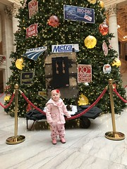 "Christmas Tree at Union Station • <a style=""font-size:0.8em;"" href=""http://www.flickr.com/photos/109120354@N07/31500722117/"" target=""_blank"">View on Flickr</a>"