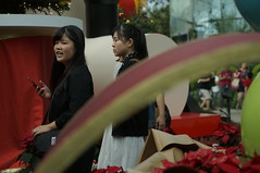 DSC00626- Over the Rainbow (oliveplum) Tags: poinsettiawishes2018 flowerdome gardensbythebay leica60f28macro people flower sony singapore leaf