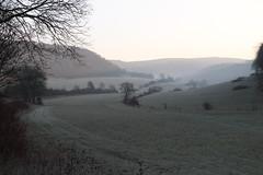 Morgenfrost (julia_HalleFotoFan) Tags: thüringen wartburgkreis bischofroda frost morgen