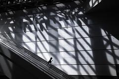 Huge shadows (reiko_robinami) Tags: streetphotography silhouette shadow monochrome woman wall urban blackandwhite lightandshadow yokohama japan