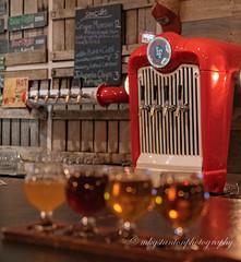 Options (mgstanton) Tags: lookoutfarm natick taproom flight flightofbeer flightoffancy taste bar beer bokeh drink glass local localbeer brew localbrew red