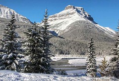 The Saskatchewan River and Mt. Coleman on the Icefields Parkway (PhotosToArtByMike) Tags: icefieldsparkway mtcoleman saskatchewanriver banffnationalpark canadianrockies banff albertacanada mountain mountains alberta