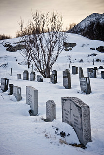 Fredor eterna / Cold eternity