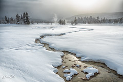 Winter at Yellowstone (Selectivebits) Tags: yellowstone snow winter nationalpark winterbeauty bestcapturesaoi aoi elitegalleryaoi makewonder21 greatphotographers