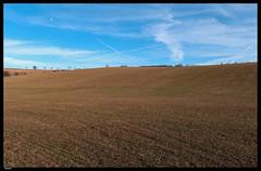 Roz 2019 (1) (***RM***) Tags: czechrepublic moravia zidlochovice country nature walk winter february nikon d850 nikkor 2470mm