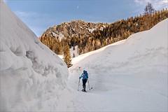 One Way (Heinrich Plum) Tags: heinrichplum plum fuji xt2 xf1855mm winter winterlandschaft heutal snow sun mountains berge berchtesgadeneralpen skitour skitouring backcountryskiing oneperson light licht alpen alps bavaria bayern austria