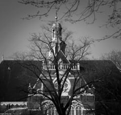 Natuur (Emil de Jong - Kijklens) Tags: zwartwit blackandwhite kerk church boom tree amsterdam kijklens