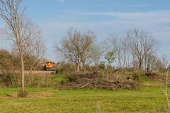 BNSF Buckholts, TX (jtrainb) Tags: bnsf buckholts edonbtm014 galvestonsub railroads signal texas coal spring