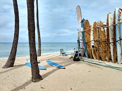 Waikiki Beach (yshija) Tags: 201803hawaii hawaii oahu waikiki beach strand surfen surfing sand surf board surfbretter palmen palm ocean