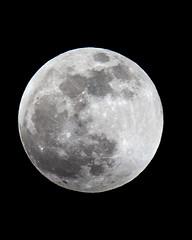 Full Moon (doer1987) Tags: fullmoon moon full lunar eclipse wolf blood