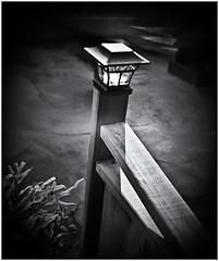 Lomography (Black and White Fine Art) Tags: lomography lomo holga holga120n kodakw400cnexp2007
