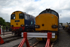 Direct Rail Services 20303 Max Joule 1958 - 1999 (Will Swain) Tags: crewe gresty bridge depot open day 21st july 2018 drs cheshire north west south county train trains rail railway railways transport travel uk britain vehicle vehicles england english europe direct services 20303 max joule 1958 1999