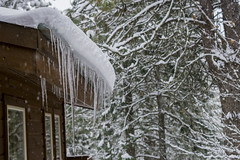 2.13.19 Snow storm Icicles 2 (Alecian35) Tags: icicles home cabin trees ice snow