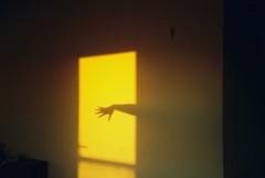 Gilded door (isadora.jpg) Tags: pentax espio 105g point shoot 35mm film kodak color plus 200 interior golden hour hand silhouette sunset alone