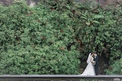 DSC07302 (Ted Foto) Tags: brideandgroom love light realwedding green wedding sydneywedding