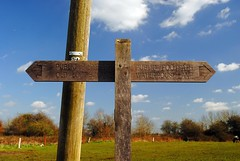Observing the next direction (zawtowers) Tags: london loop section 5 five hamseygreentocoulsdonsouth walk amble stroll walking exploring outer suburbs green spaces sunday 24th march 2019 warm dry sunny afternoon blue skies sunshine sign post wooden direction guidance horse field