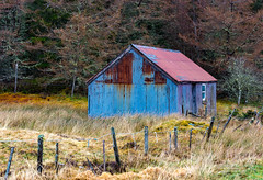 Glen Oykel 16 March 2019 00000.jpg (JamesPDeans.co.uk) Tags: hut forthemanwhohaseverything roofs decay highlands gb greatbritain fence outbuildings landscape windows boundaries roof door printsforsale unitedkingdom commerce doors scotland britain jamespdeansphotography corrugatediron wwwjamespdeanscouk history architecture metals landscapeforwalls europe uk digitaldownloadsforlicence